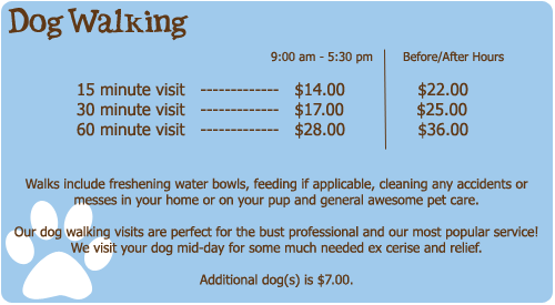 Miami Pet Sitting And Dog Walkers Services Invoice